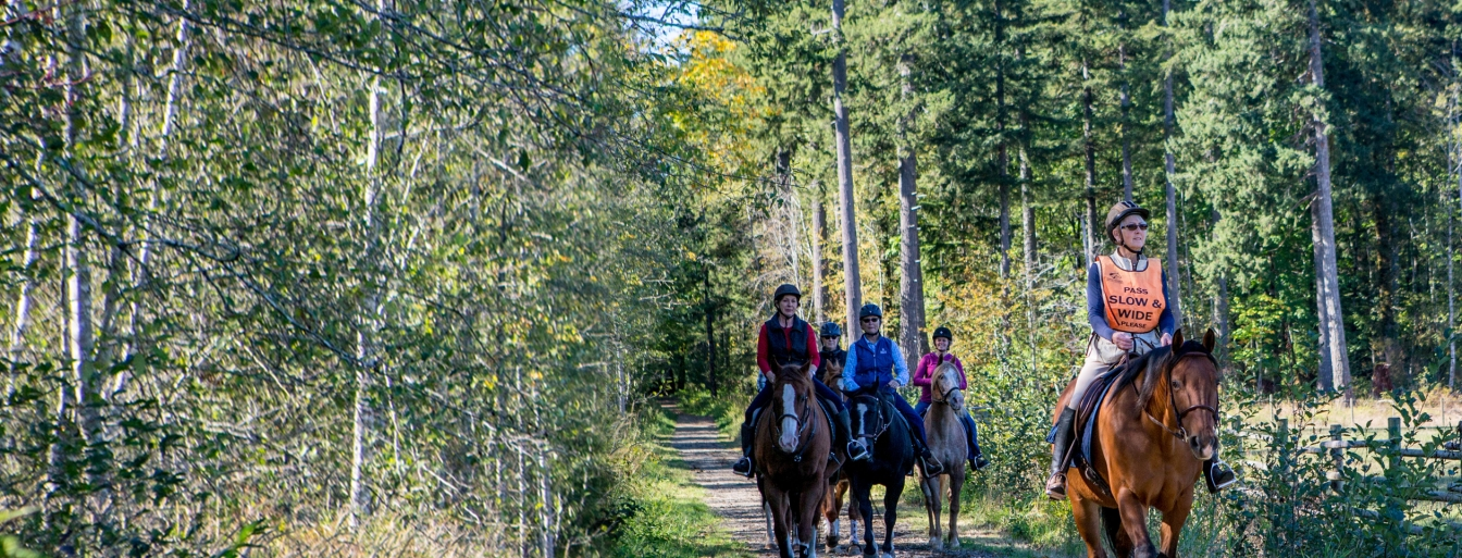 Equestrian Trail Riding Survey