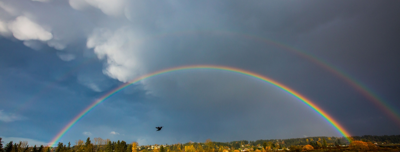 rainbow, comox valley