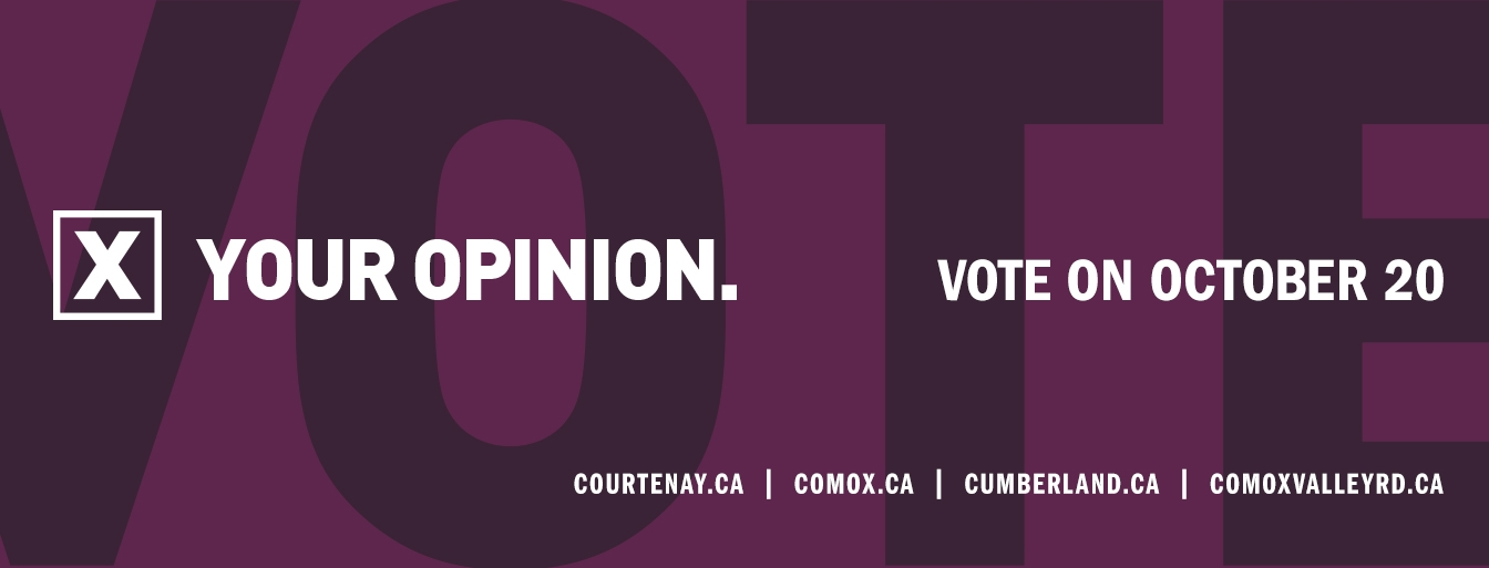 Vote Your Opinion